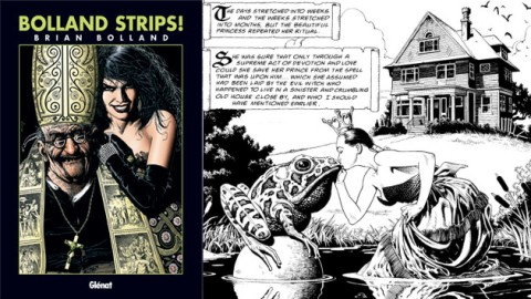 bolland_strips.jpg